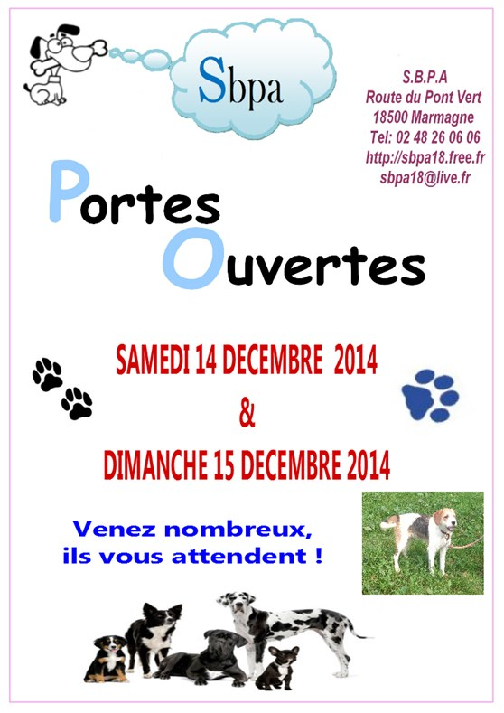 Invitation noel des Animaux-A4-2 (558 x 789)