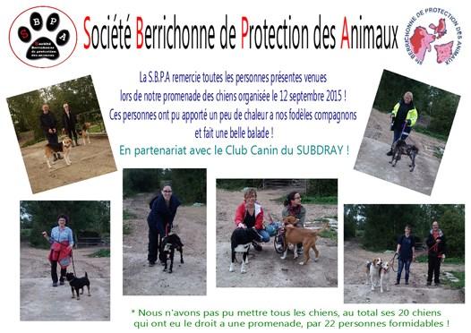 affiche-remerciement-promenade-des-chiens-2015-526-x-372