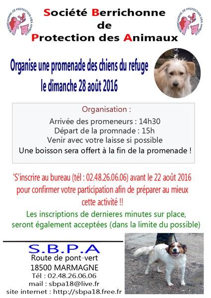 flyers-promenade-des-chiens-2016-425-x-600