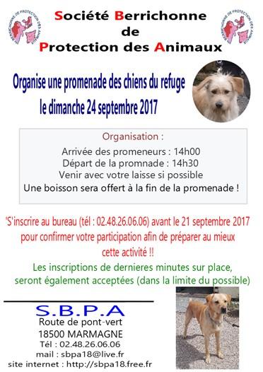flyers-promenade-des-chiens-2017-372-x-526