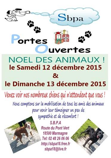 noel-des-animaux-2015-1